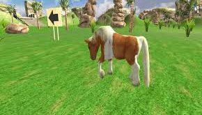 naik kuda lucu